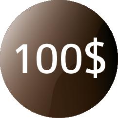 dollar80px